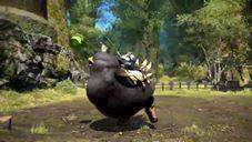 《LAWSON》x《最終幻想 14》「胖黑陸行鳥」贈送活動預告公開