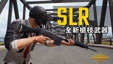 PUBG LITE新槍