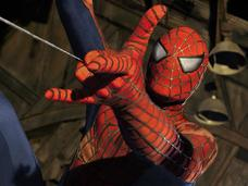 外國3男童挑釁黑寡婦蜘蛛,只為變蜘蛛人