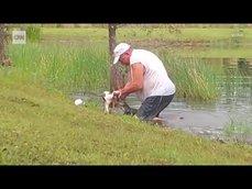 主人搬開鱷魚嘴救出愛犬