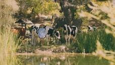 進入《模擬市民 4:鄉間生活》帶給您最完美的鄉村生活
