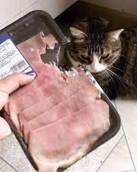 必須隨時注意買回來的食物