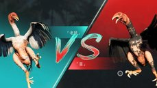 不准雞雞攻擊!動保PETA批《極地戰嚎6》鬥雞遊戲「美化血腥競技」
